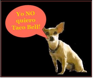 Case Study Taco Bell Dog Advertisement